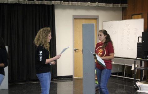 Personal view: Behind the scenes of The Fall Musical, The Wizard of OZ