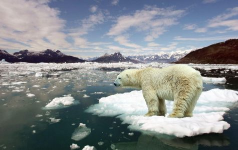 The Terrifying Truth of Global Warming