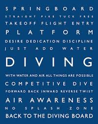 Diving Takes Practice, Patience, and Perfection.