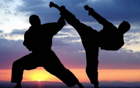 Personal View: Being A Black Belt Testing Partner