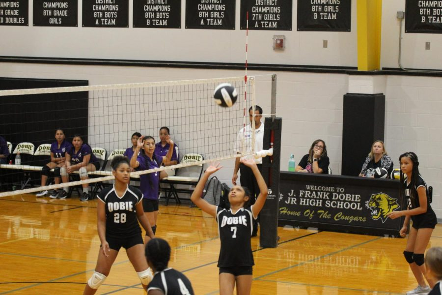 Seventh grade volleyball: halfway through a winning season