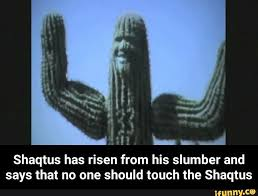 Shaqtus is a popular and funny meme from the Internet.