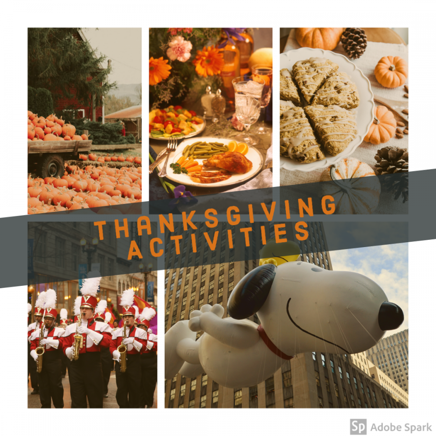 Students have big plans for Thanksgiving break