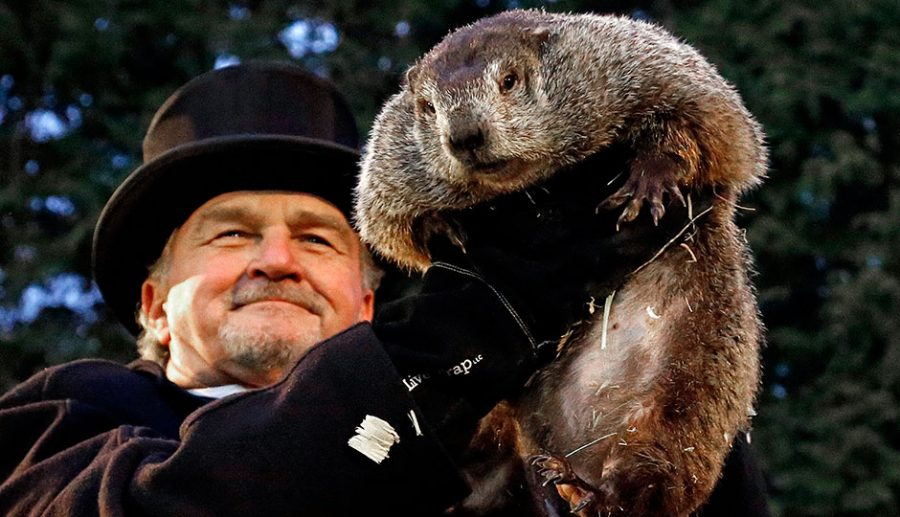 All About the Strange History of Groundhog Day