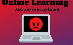 Online School and Why so Many People Hate It